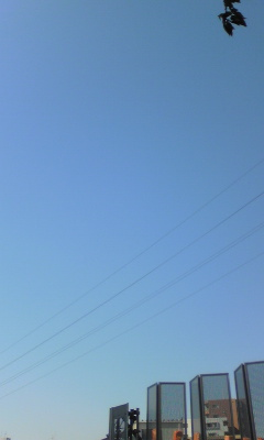 Image403.jpg